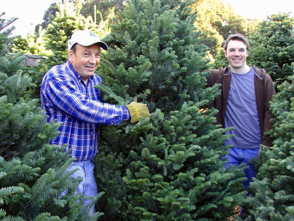 Post image for Menlo Park Kiwanis Club Christmas tree lot is open for business