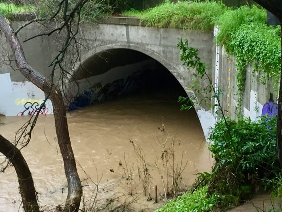 San Francisquito Creek Project Update Community Meetings set for  Feb. 23 and March 2