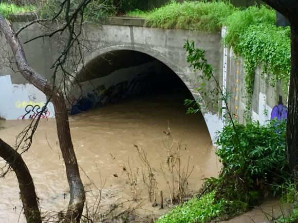 Creek at Pope Street before noon Feb9 - 1