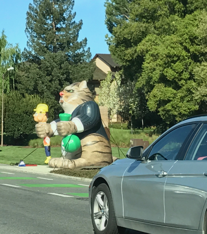 Spotted: Giant inflatable cat on Sand Hill Road