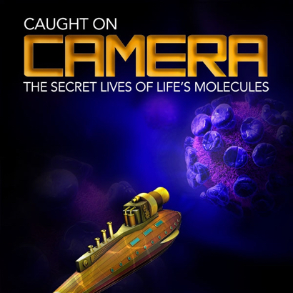 Post image for Secret lives of life's molecules explored at SLAC lecture on April 11