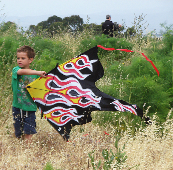Kites fly high in the sky at Bedwell Bayfront Park