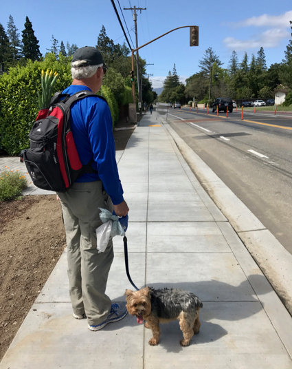 Post image for Trying out the new sidewalk from Arbor to Olive on Santa Cruz Avenue