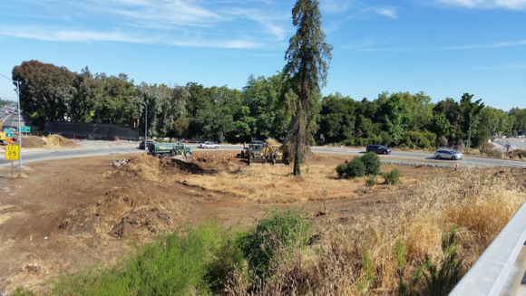 Post image for Menlo Park resident says goodbye to trees many locals may have taken for granted
