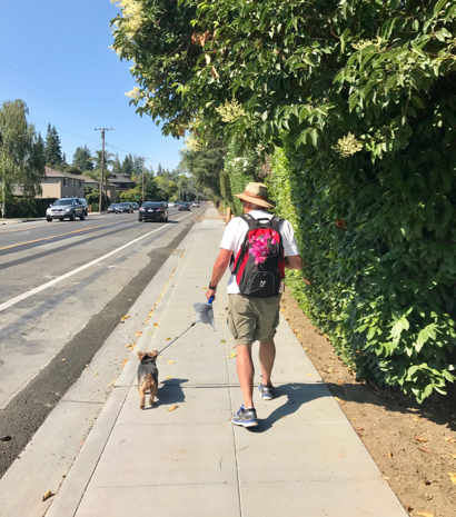 Post image for Spotted: New sidewalk extending to San Mateo Drive along Santa Cruz Avenue
