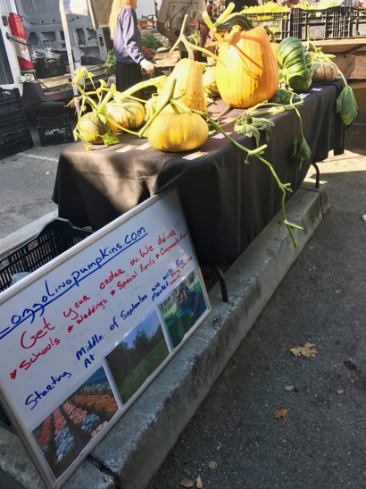 Post image for Spotted: Cozzolino pumpkins at Menlo Park Farmers Market