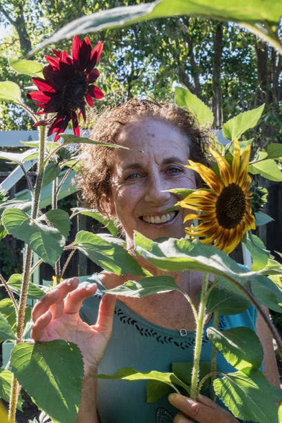 Sunflowers brighten up Robin Tobias's Menlo Park yard