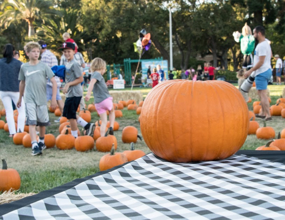 Pumpkins and the preschool set take center stage at St. Raymond Pumpkin Festival