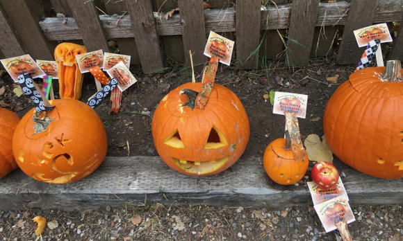 Post image for Spotted: Halloween parading and pumpkin carving in University Park neighborhood