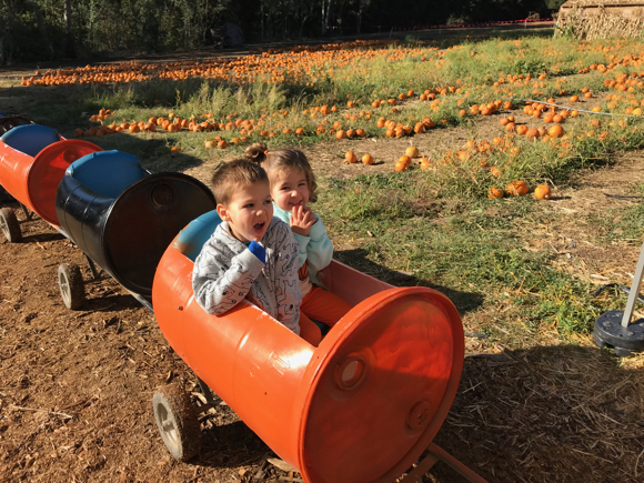 Post image for Back to Webb Ranch Pumpkin Patch with first time visitors, a pair of preschoolers