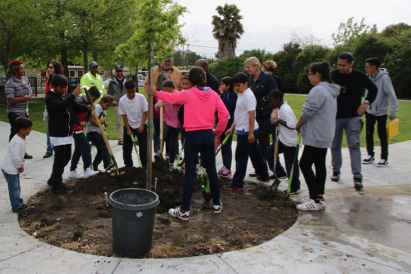 Post image for Menlo Park Mayor Kirsten Keith hosts tree planting meeting on Oct. 19