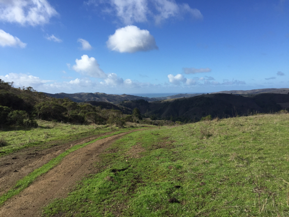 Post image for La Honda Creek Open Space Preserve opens to the public today