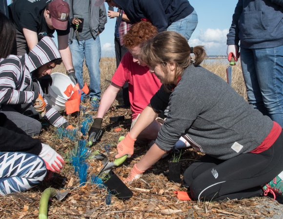 Post image for Exploring the Living Shoreline planting event at Cooley Landing with artist Linda Gass