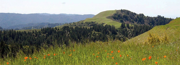Post image for Midpen offers public sale of green bonds to fund Measure AA open space projects