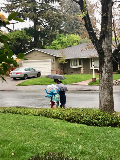 "Post image for ""Atmospheric river"" sputters more than drenches Menlo Park"
