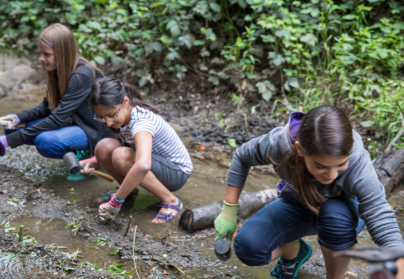 Hillview Environmental Club works to stabilize banks of San Francisquito Creek