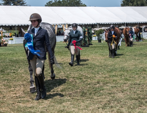 Post image for 2018 Menlo Charity Horse Show is a wrap after six days of competition