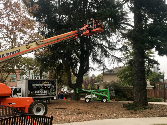 Post image for Spotted: Holiday lights coming to Fremont Park