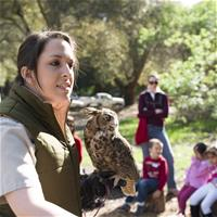 Sign up for Mammal Menagerie coming to Belle Haven Branch Library on Nov. 4