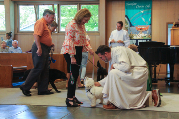 It's blessing of the animals day at Trinity Church in Menlo Park