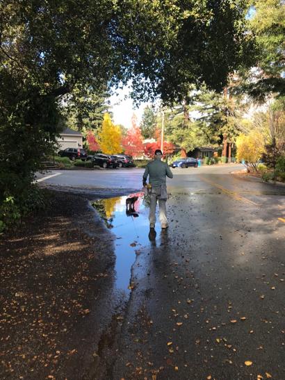 Light but steady rain overnight in Menlo Park
