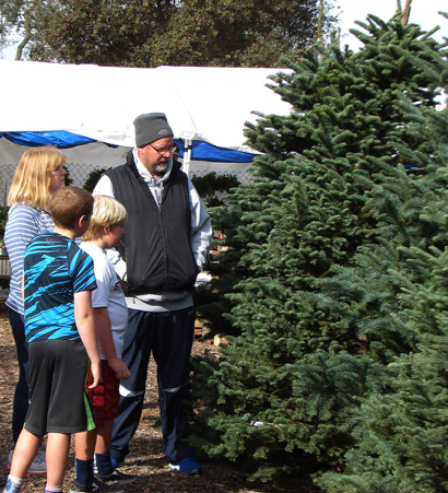 It's the day after Thanksgiving – and local Christmas tree lots are open
