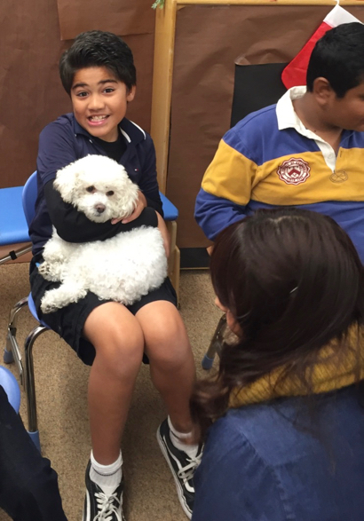 Spotted: Minnie the therapy dog visiting students at Encinal School