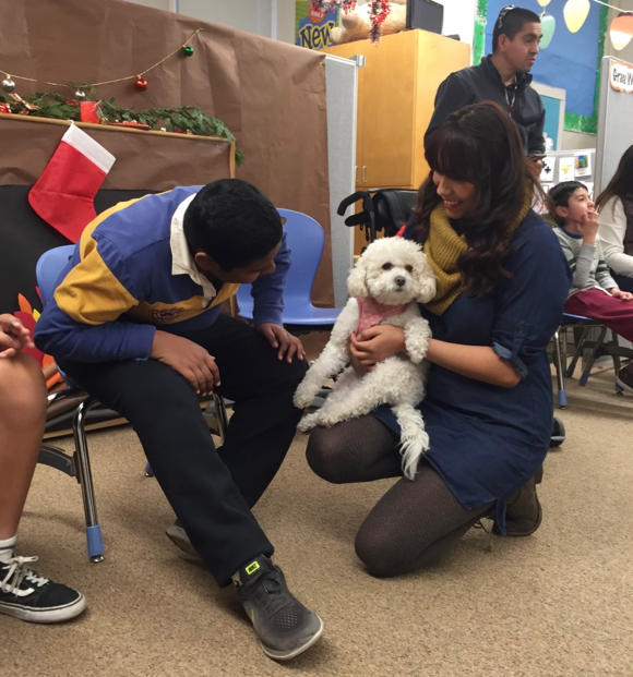 Post image for Spotted: Minnie the therapy dog visiting students at Encinal School