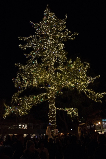 Menlo Park residents get in the holiday spirit with tree lighting festivities