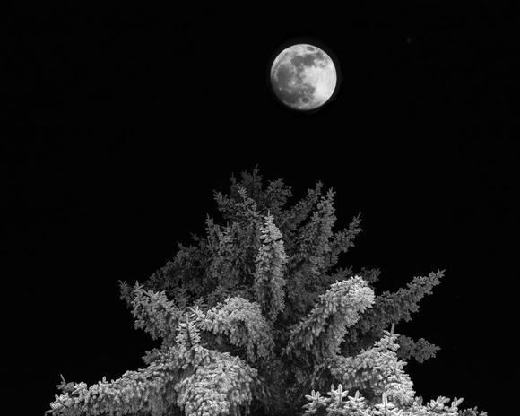 Beautiful full moon over Menlo Park creates stunning image