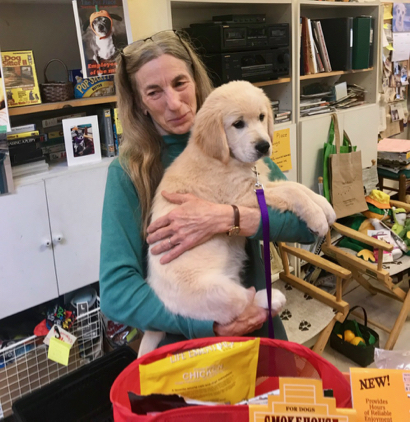 Spotted: Sugar the Golden Retriever visiting the Pet Place