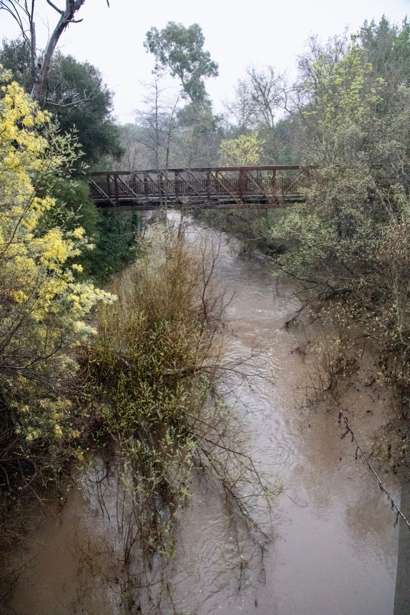 Menlo Park residents invited to meeting on San Francisquito Creek flood protection and restoration project