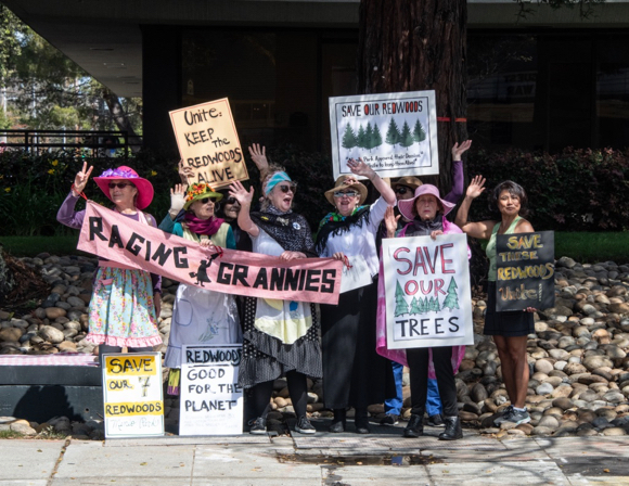 Group gathers to protest the removal of Redwood trees in Menlo Park