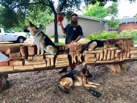 Big John the chainsaw artist has three German Shepherd admirers