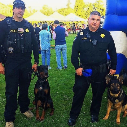 Bring your dogs and family to Menlo Park's 4th Annual Paws for Paws on Aug. 24