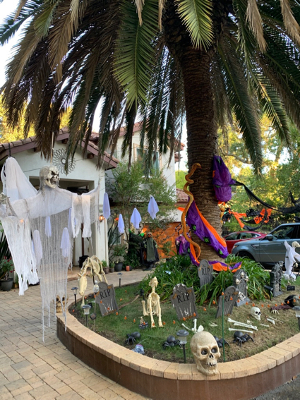 Spotted: Decked out Halloween front yard