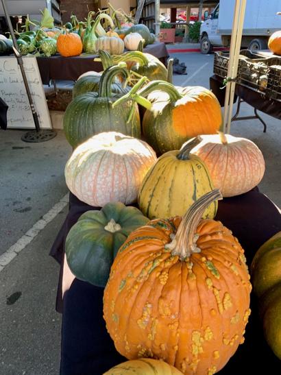 Spotted: Cozzolino's pumpkins at Menlo Park Farmers Market