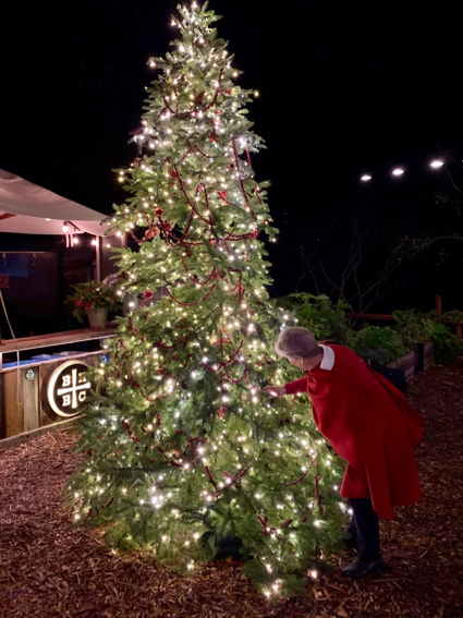 Whoops! Those are stars overhead at Zott's – not a tent