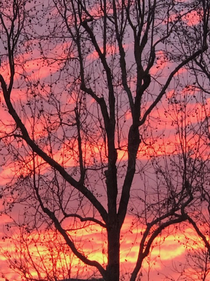 """Spotted: A """"wow"""" of a sunset in Menlo Park"""