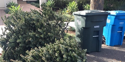 Holiday tree recycling available through Jan. 31 for Menlo Park resident