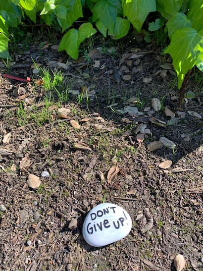 "Spotted: ""Don't give up"" rock in Menlo Oaks"