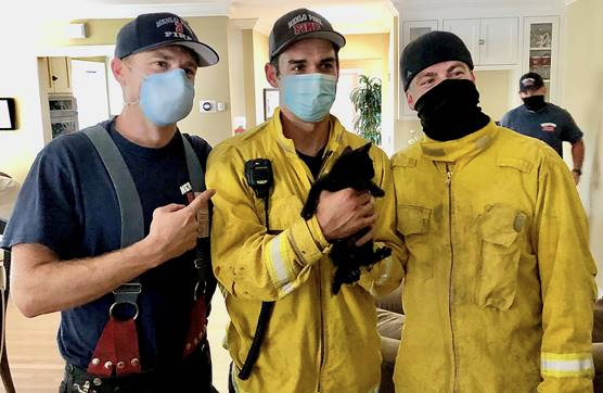 Curious kitten named Bear rescued from heating duct by Menlo Fire