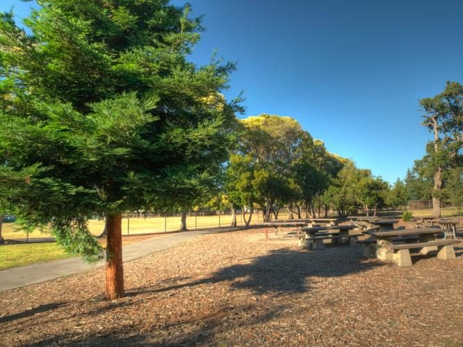 Picnic areas expanded in San Mateo County Parks
