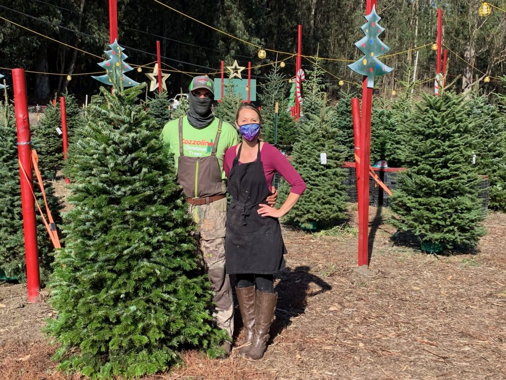 What's new at local Christmas tree lots this year