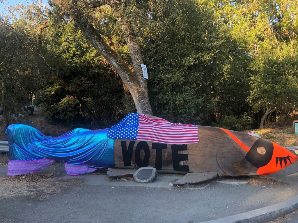 Spotted: Wooden fish says, VOTE!