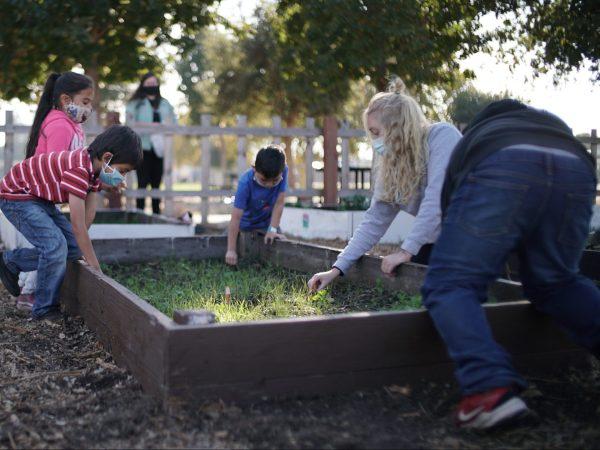 Local nonprofits partner to bridge distance learning education gap