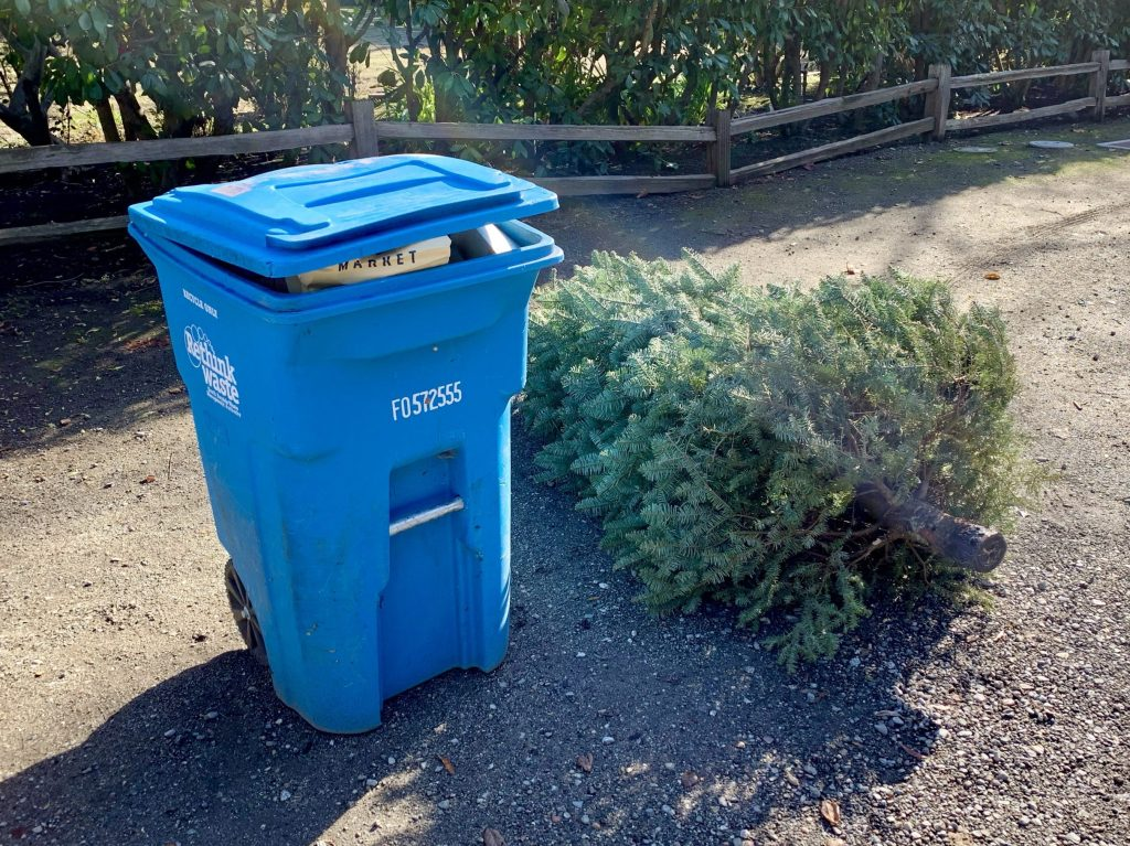 Christmas tree recycling available from January 2 to 31 in Menlo Park