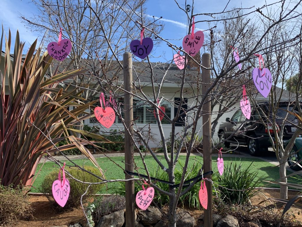Spotted: Another Valentines Day tree in Menlo Park