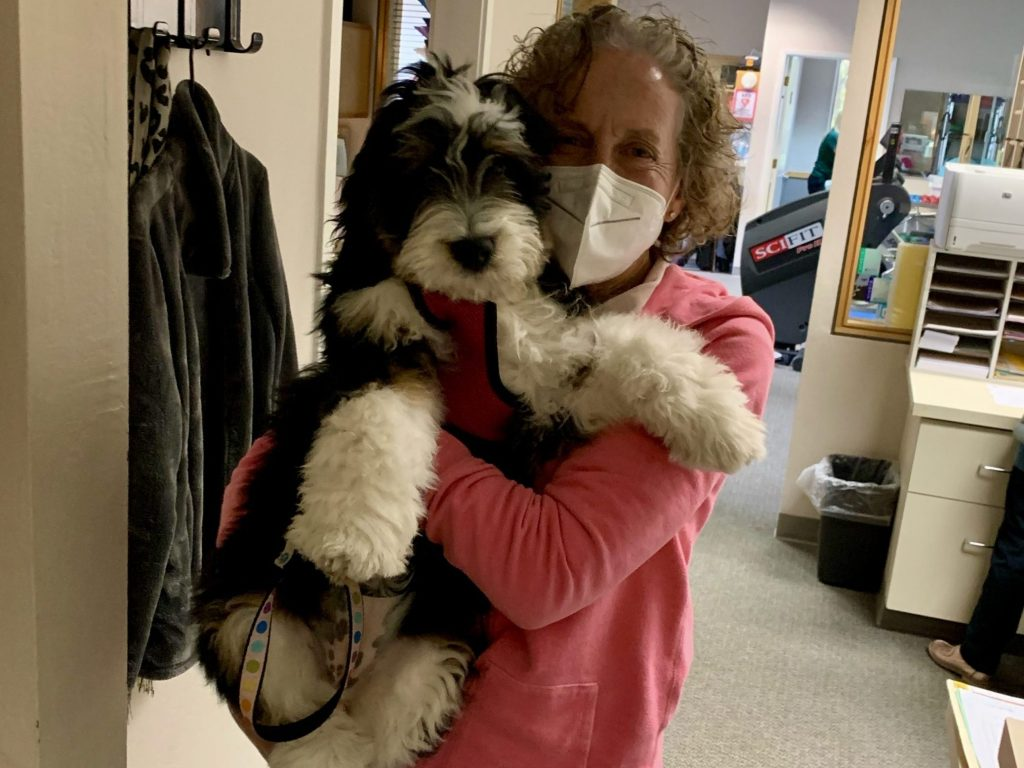 Spotted: Adorable – big! – puppy at Tobias Physical Therapy