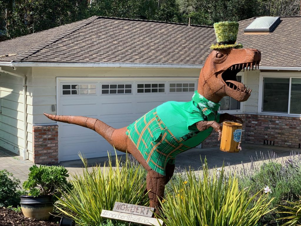 Local creatures all decked out for St. Patrick's Day